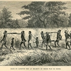 A book illustration depicts a caravan of African slaves, tethered together in pairs by wooden yokes and chains around their necks. An original caption suggests the gang is being marched to Tete, a town located on the Zambezi River. Mozambique, circa 1865 (Copyright, ASI)